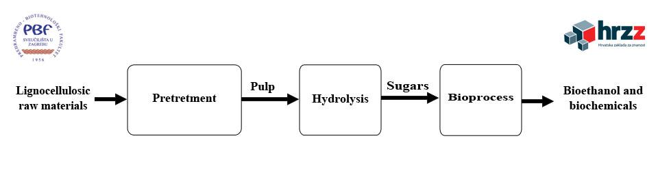 Proizvodnja bioetanola i biokemikalija iz otpadnih poljoprivrednih lignoceluloznih sirovina na principima ekološke i ekonomske održivosti (SPECH-LRM, 9158)